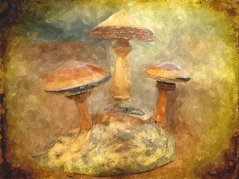 Wood Mushrooms in Watercolor by Amanda Struz