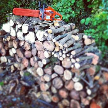 Wood Pile by Alex Nagle