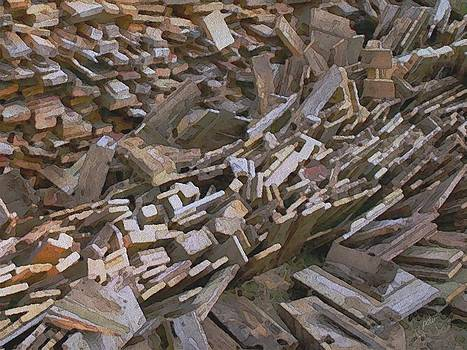 Wood Pile by Philip White