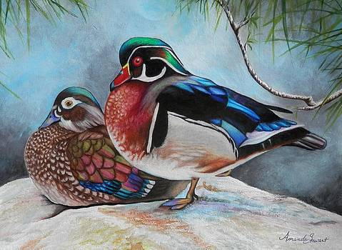 WoodDucks by Amanda Hukill