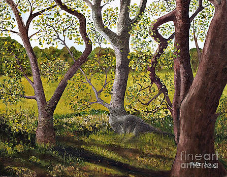 Wooded Glade by Marie Lewis