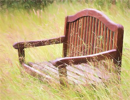 Peggy Collins - Wooden Bench Versus Mother Nature