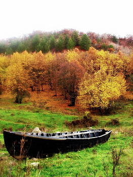 Ioanna Papanikolaou - wooden boat in autumn forest