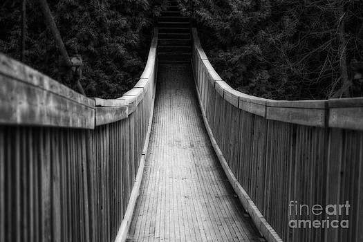 Wooden Bridge by Miss Dawn