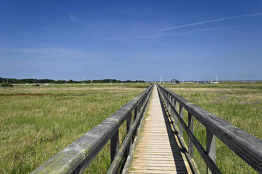 Wooden Bridge - Newtown - Isle of Wight by Rod Johnson