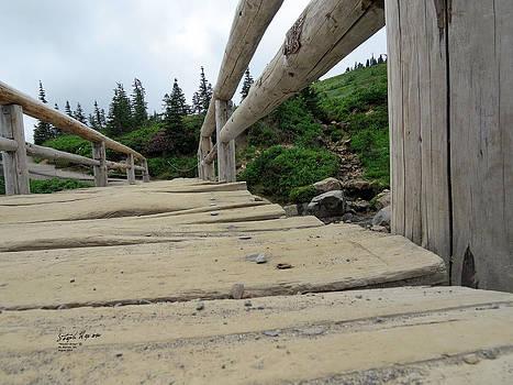 Wooden Bridge by Steph Maxson