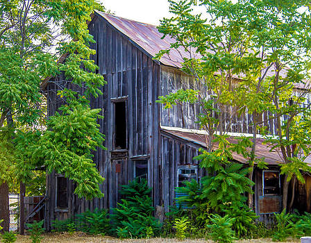 Wooden Farm House 1800s by Brian Williamson