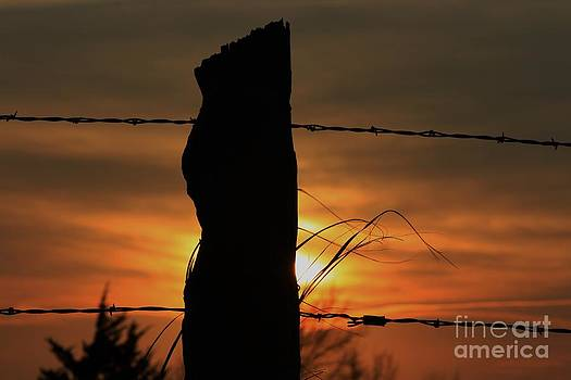 Wooden fence Post Sunset by Robert D  Brozek