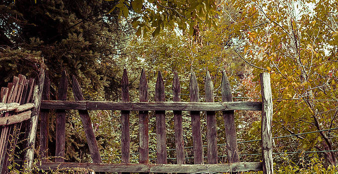 Wooden fence. by Slavica Koceva