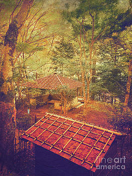 Beverly Claire Kaiya - Wooden Gazebo and Small Shed in Forest