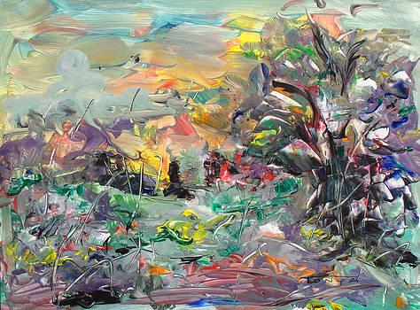 Woodland Light by Tonya Schultz
