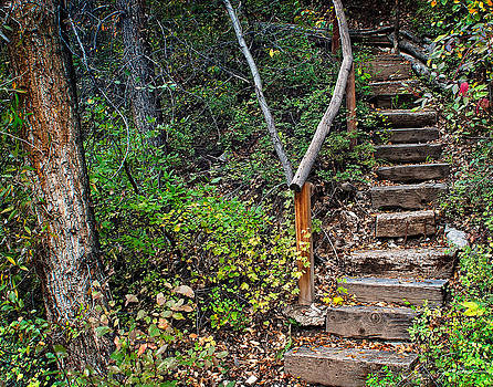 Julie Magers Soulen - Woodland Stairs in Aspen Colorado