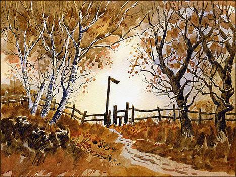 Anthony Forster - Woodland Walk