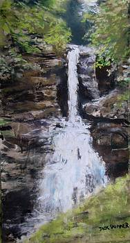 Woodland Waterfall by Jack Skinner