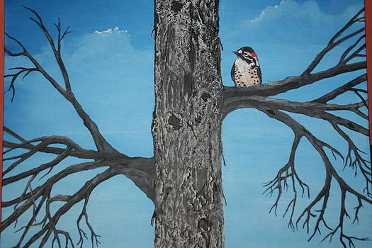 Woodpecker  by Donna Jeanne  Carver