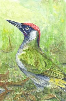 Woodpecker watercolor painting by Oty Kocsis