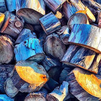 Woodpile by Barry Shereshevsky