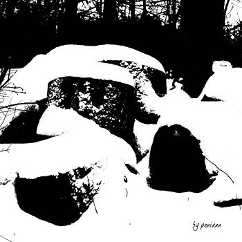 Woodpile During First Winter Snow Storm 12-26-12 by Penny McClintock