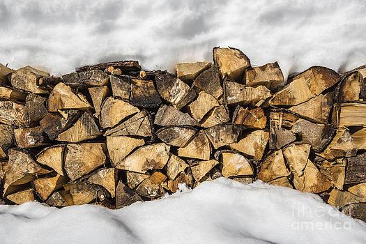 Woodpile by Maurizio Bacciarini