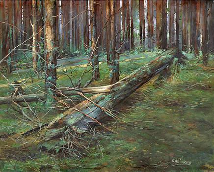 Woods by Victor Mordasov