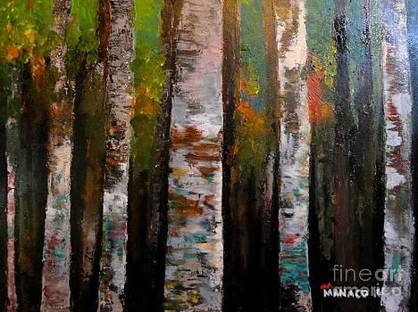 Woods1 by Ferdz Manaco