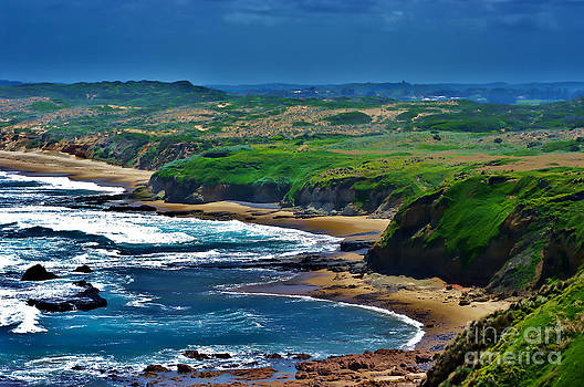 WoolamiBeach looking South from the Cape by Blair Stuart