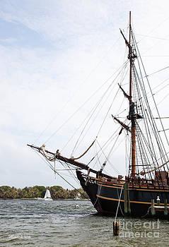 Michelle Wiarda - Working Aboard the Bounty