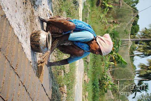 Working Lady by Sharath Babu S