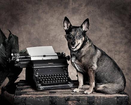 Rebecca Brittain - Working Office Dog in Glasses