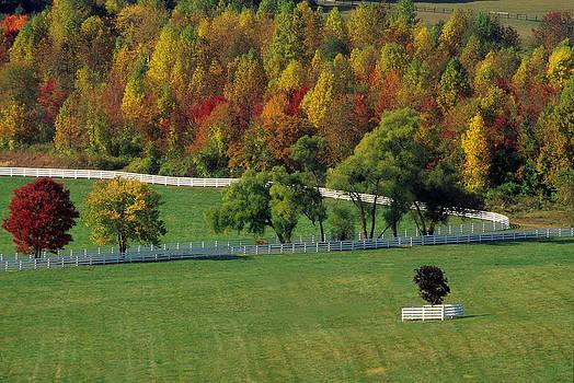Harold E McCray - Worthing Farm III - Maryland