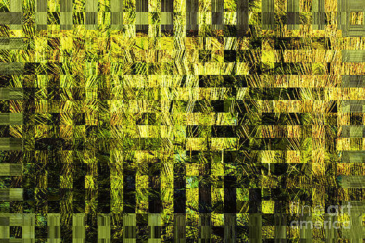 Woven Grass Abstract by Michelle Orai