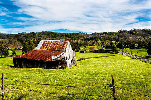 Wow - The Grass Is Greener On The Other Side by Robert L Jackson