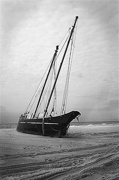 Wreck of Le Papillion by Bryan Ranker