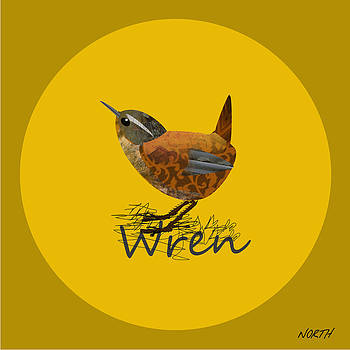 Wren by Kenneth North