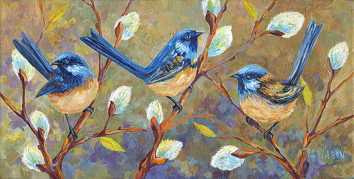 Wrens In Pussywillows by Peggy Wilson