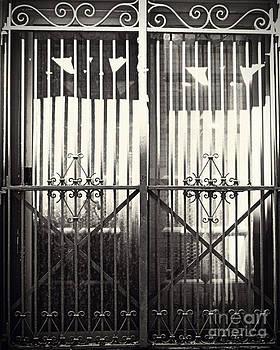 Emily Kelley - Wrought Iron Gates