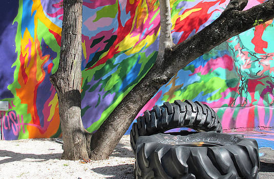 Wynwood Walls by Rosie Brown