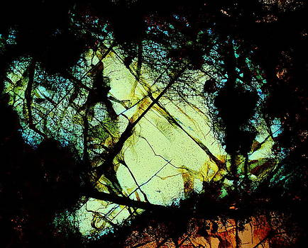 X Marks The Spot by Hodges Jeffery