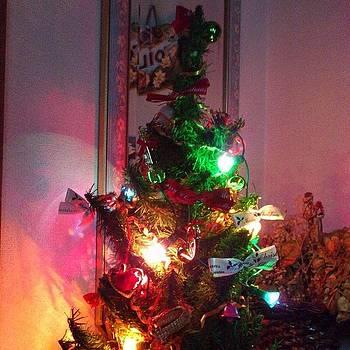 Little Christmas by Yoshikazu Yamaguchi