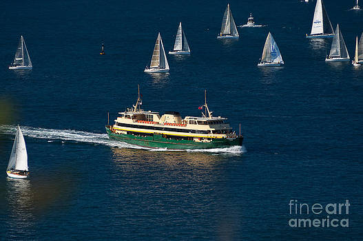 David Hill - Yachts and Manly Ferry on Sydney Harbour