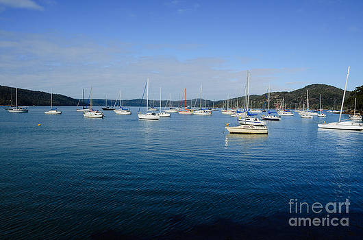 David Hill - Yachts moored in a quiet estuary.