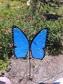 Yard Butterfly by Heather New