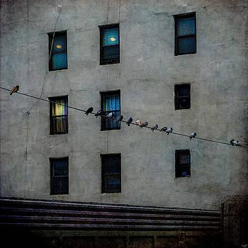 Yardbirds by Chris Lord