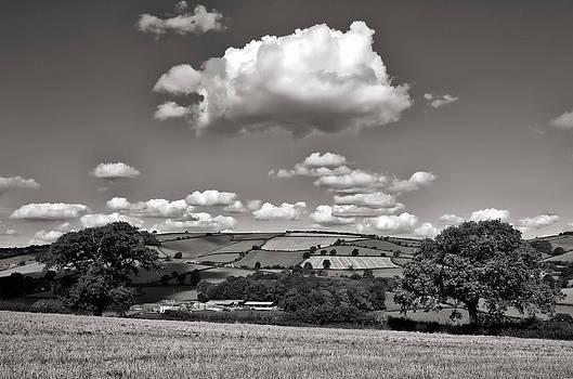 Yarde downs - Bradninch by Pete Hemington