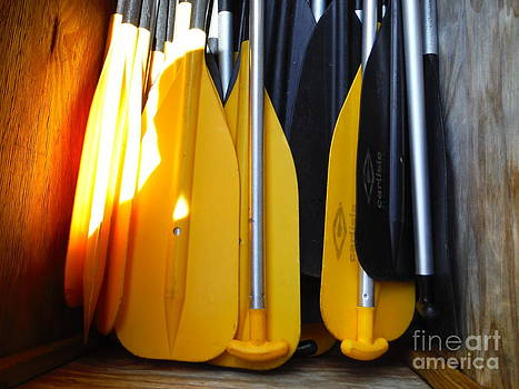 Paddy Shaffer - Yellow And Black Paddles