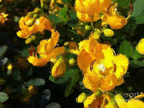 Yellow and Sunny by Lyn Pacific