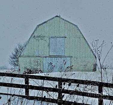 Yellow Barn by Tracy Rice Frame Of Mind