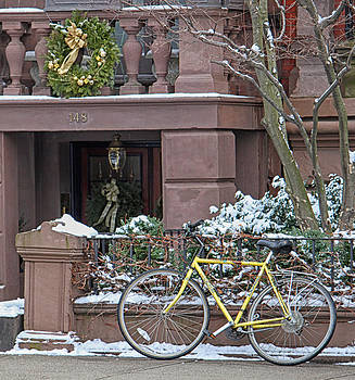 Yellow Bike In Boston by Susan OBrien