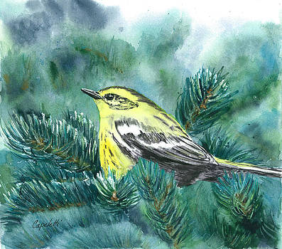 Yellow Bird in Fir Tree by Barb Capeletti