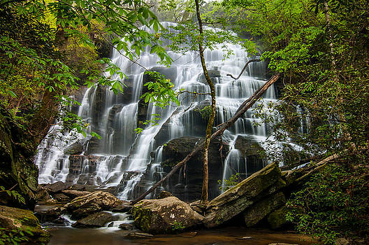 Yellow Branch Falls by Dustin Ahrens